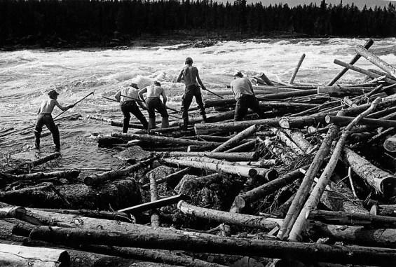Shine team sending logs downstream